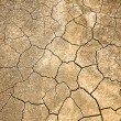 Cracked and Arid  Ground without water — Stock Photo