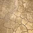 Stock Photo: Cracked and Arid Ground without water