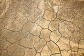 ひびの入ったと乾燥地上水なし — ストック写真