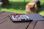 Chess on picnic — Stock Photo