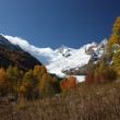 Golden autumn in mountains of Caucasus — Stock Photo #6137194