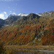 Fall Caucasus — Stock Photo #6137221