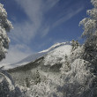 Snow Caucasus, Dombay — Stock Photo
