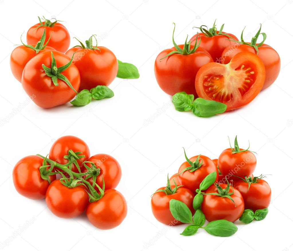 Tomatoes collection isolated on white background  Stock Photo #5547699