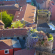 Picturesque Old town aerial view / rooftops  pattern - Stock Photo