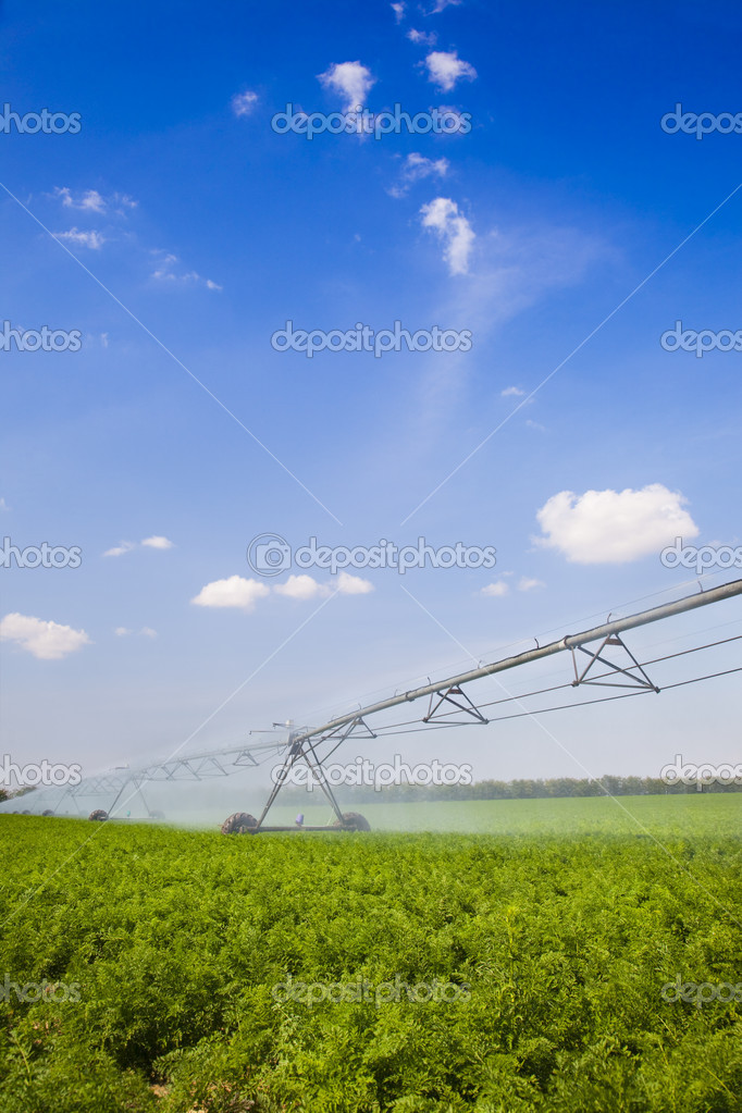 Irrigation in Field / agriculture Equipment / summer — Stock Photo #5660896
