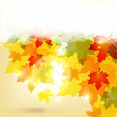 Autumn background with leaves and copy space for your text / eps — Stock Vector