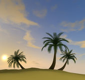 3d render of island with palm-trees and hazy evening sun — Stock Photo