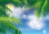 Tropical background, vector illustration — Stock Vector