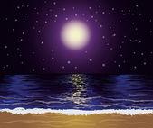 Schöne tropische nacht, vektor-illustration — Stockvektor
