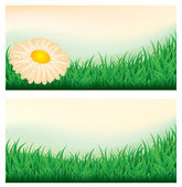 Summer meadow banners, vector illustration — Stock Vector