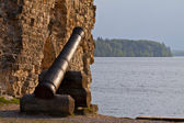 Ancient cannon at the castle ruins. — Стоковое фото