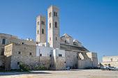 St. Corrado Cathedral. Molfetta. Apulia. — Stock Photo