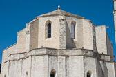 马焦雷圣玛丽亚大教堂。论功行赏。阿普利亚. — 图库照片