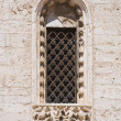 图库照片: Absidal window.