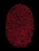 Fingerprint / vector — ストック写真