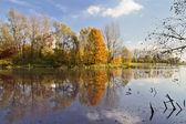 Lake in autumn — Stock Photo
