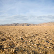 Wilderness in Namibia — Stock Photo
