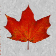 Canadian flag — Foto de Stock