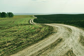 Landscape picture, road wallpape, spring — Stock Photo