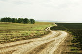 Landscape picture, road wallpape — Stock Photo