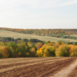 Stock Photo: Landscape picture, road wallpaper, autumn