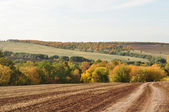 Landscape picture, road wallpaper, autumn — Stock Photo