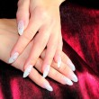 Stock Photo: Elegant nail design