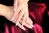 Elegant nail design — Stock Photo