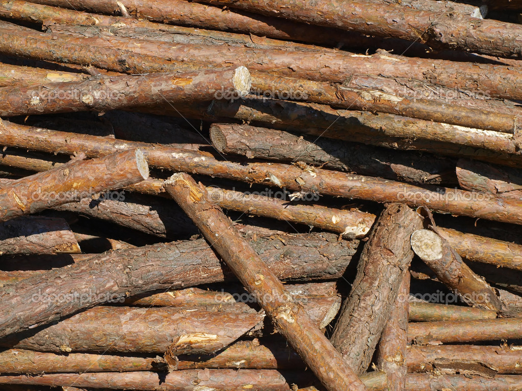 Blocks of wood as biomass or energy or raw material for wood  Stock Photo #6054572