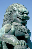 Lion at the Emperors Palace — Stock Photo