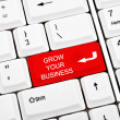 Grow your business key — Stock Photo