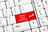 Grow your business key — Stock Photo