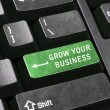 Stock Photo: Grow your business key