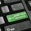 Grow your business key — Stock Photo #6240276