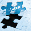 Career puzzle — Foto Stock