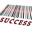 Success on barcode — Stock Photo #6242554