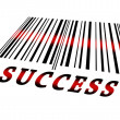 Success on barcode — Stock Photo