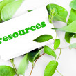 Stock Photo: Resources message on leaves