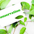 Conservation message on leaves — Stock Photo