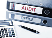 Audit write on folder — Stock Photo