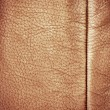 Brown leather — Stock Photo #6323056