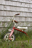 Discarded Tricycle — Stock Photo