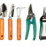 Plant care utensils — Stock Photo #5538599