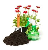 Flower planting tools and dirt — Stock Photo