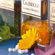 Stock Photo: Close view of CalendulOfficinalis plant extract