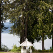 Gazebo by lake — Stock Photo #5704586