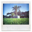Instant film frame with saturated summer image — Stock Photo