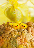 Easter chicks — Stock Photo