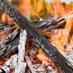 Burning logs — Stock Photo #6437321